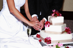 cake cutting with bride and groom